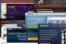WordPress Theme Clubs Compared