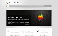 TheProfessional WordPress Theme from ThemeForest
