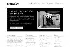 Specialist WordPress Theme from Templatic