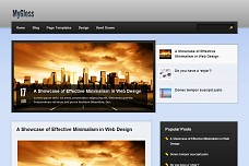 Gloss Surface WordPress Theme from Organized Themes