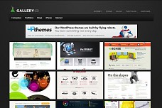 Gallery Pro WordPress Theme from WooThemes