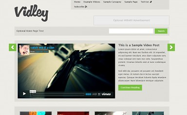 Vidley WordPress Theme - Gray Color Scheme (Medium Screenshot)