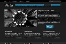 Onyx WordPress Theme from ThemeForest