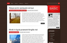 Basic WordPress Theme from Acosmin