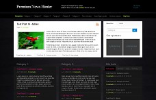 News Hunter WordPress Theme from NattyWP