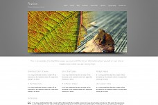 Frusion WordPress Theme from ChimeraThemes