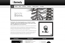 Remedy Skeleton WordPress Theme from PressCoders