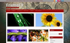 FrameFX WordPress Theme from Organized Themes
