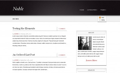 Noble WordPress Theme - Black Color Scheme (Medium Screenshot)