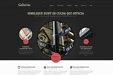 Gallerise WordPress Theme from ThemeForest
