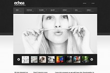 Echea WordPress Theme from MOJO Themes