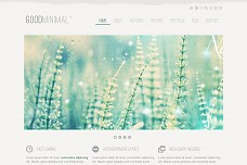 Good Minimal WordPress Theme from ThemeForest