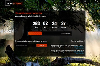 Maximized WordPress Theme
