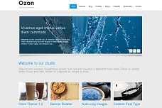 Ozon WordPress Theme from MOJO Themes