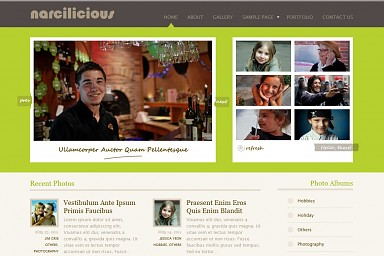 Narcilicious WordPress Theme - Green Color Scheme (Medium Screenshot)