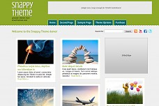 Snappy WordPress Theme from Diva Themes
