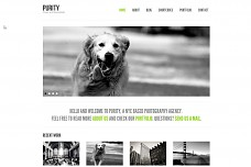 Purity Portfolio WordPress Theme from ThemeForest