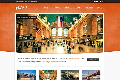 Ovid WordPress Theme - Orange Color Scheme (Medium Screenshot)
