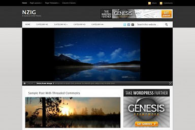 Nzig WordPress Theme