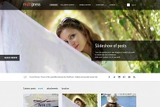 MultiPress WordPress Theme from WooThemes