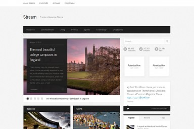 Stream WordPress Theme - Gray Color Scheme (Medium Screenshot)