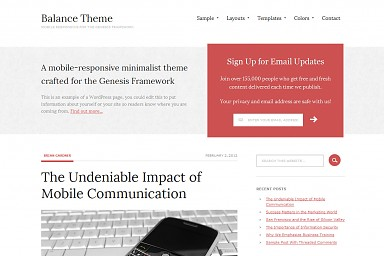Balance WordPress Theme - Red Color Scheme (Medium Screenshot)