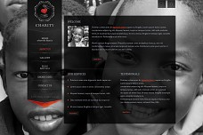 Charity WordPress Theme from ThemeForest