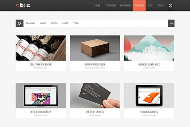 Radius WordPress Theme - Gray Color Scheme (Medium Screenshot)