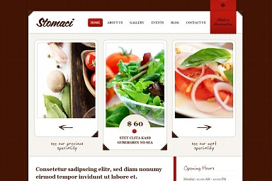 Stomaci WordPress Theme - Red Color Scheme (Medium Screenshot)