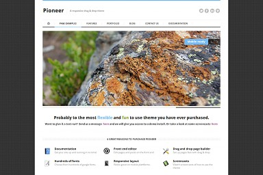 Pioneer WordPress Theme - White Color Scheme (Medium Screenshot)
