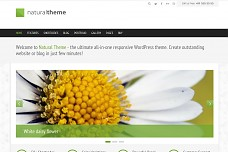 Natural WordPress Theme from ThemeForest