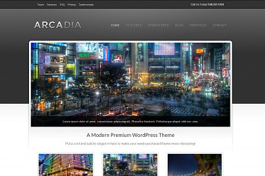 Arcadia WordPress Theme - Gray Color Scheme (Medium Screenshot)