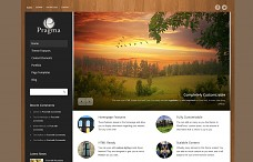 Pragma Business &amp; Portfolio WordPress Theme from ThemeForest