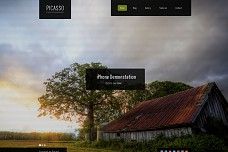 Picasso Photography WordPress Theme from ThemeForest