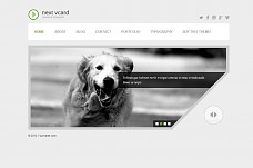 Next vCard Responsive WordPress Theme from ThemeForest
