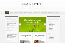 Magnificent WordPress Theme from ColorLabs